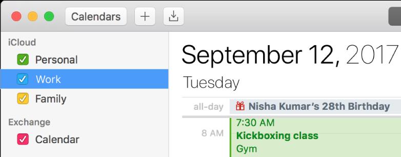 Et Kalendervindue i dagsoversigt viser farvekodede personlige kalendere, arbejds- og familiekalendere i indholdsfortegnelsen under overskriften iCloud-konto og en anden kalender under overskriften Exchange-konto.