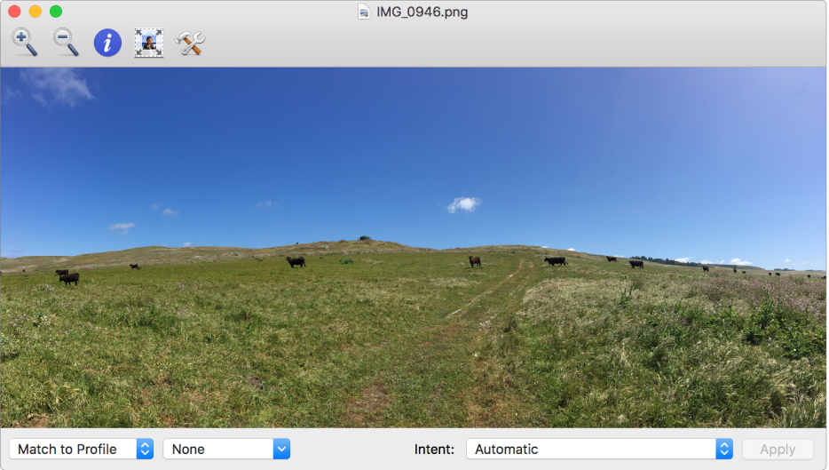 An image of cows in a field in the ColorSync Utility window.