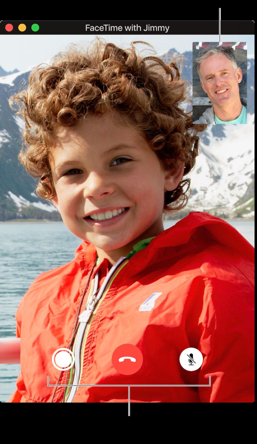 Mueve el puntero por encima de la ventana de FaceTime para ver las opciones de llamada, como Live Photo, Finalizar y Silenciar.
