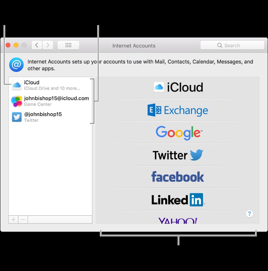 Προτιμήσεις των Λογαριασμών Διαδικτύου με λογαριασμούς iCloud και Twitter στα δεξιά και διαθέσιμους τύπους λογαριασμών στα αριστερά.