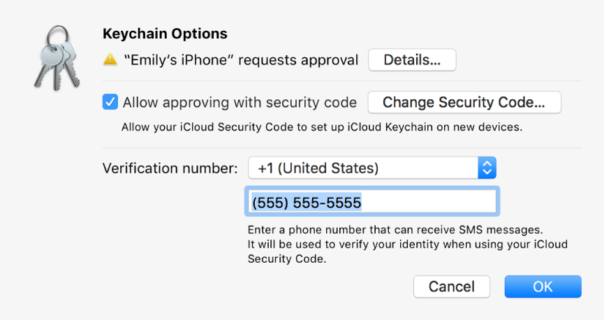 The iCloud Keychain Options dialog with the name of the device requesting approval and a Details button next to it.