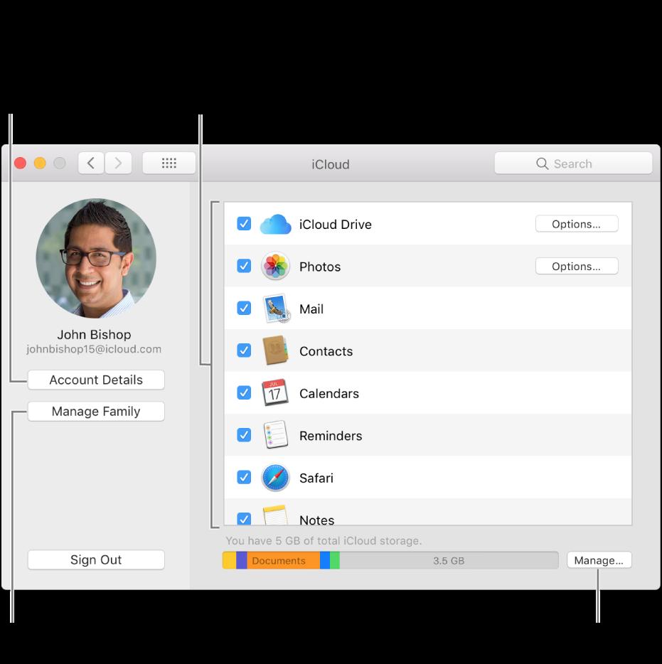 Panel de preferencias iCloud con todas las funciones seleccionadas.