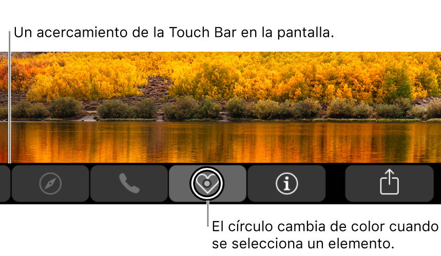 TouchBar con zoom en la parte inferior de la pantalla; el círculo sobre un botón cambia cuando se selecciona el botón.