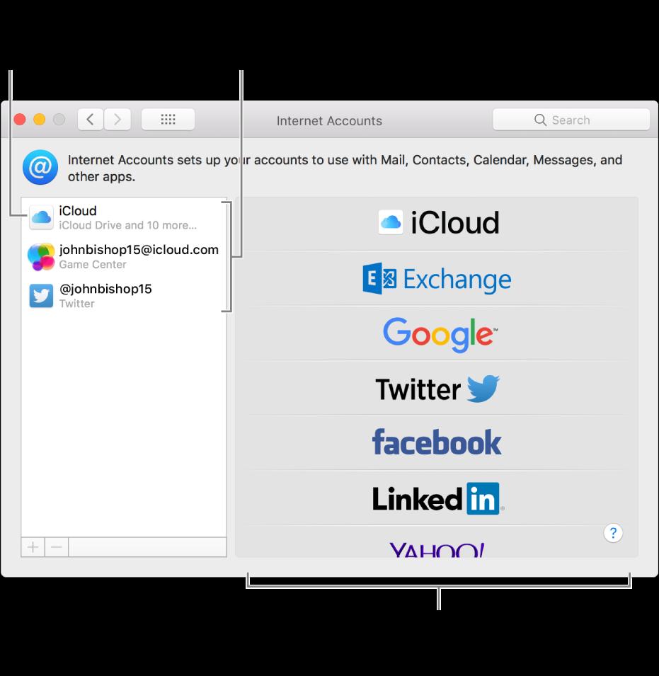 Preferenze Account Internet con gli account iCloud e Twitter elencati sulla destra e i tipi di account disponibili elencati sulla sinistra.
