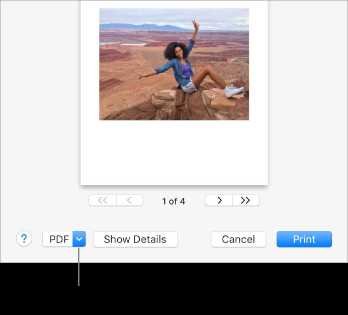 「PDF」ポップアップメニューをクリックして、「PDF として保存」を選択します。