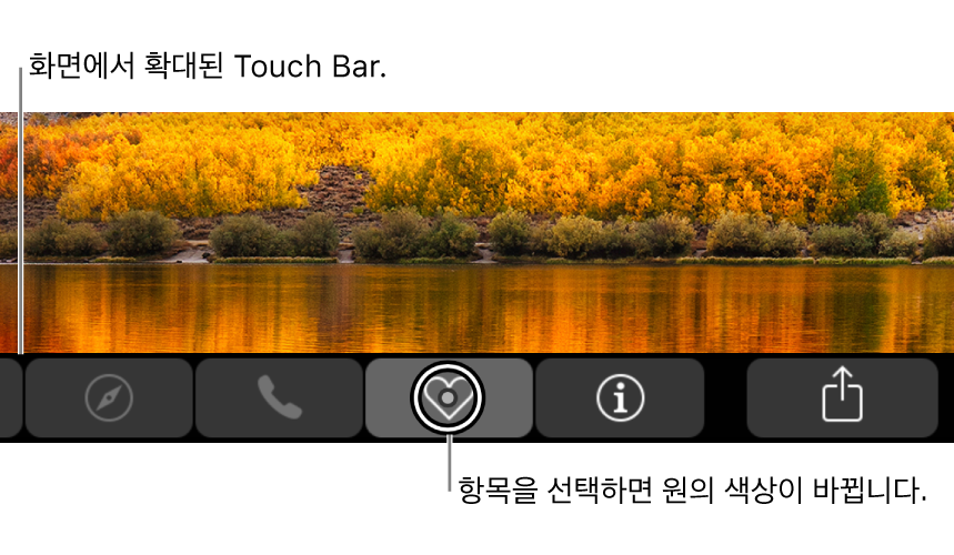 화면 하단의 확대된 Touch Bar. 버튼을 선택하면 버튼 위의 원이 바뀝니다.