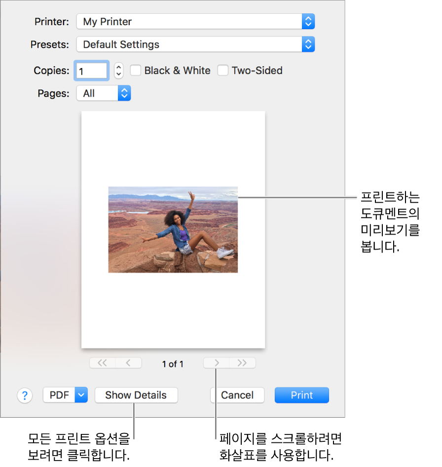 프린터 상태를 나타내는 프린터 팝업 메뉴 아이콘입니다. 프린트 대화상자에서 프린트 작업의 작은 미리보기를 표시합니다. 모든 프린트 옵션을 보려면 세부사항 보기 버튼을 클릭하십시오.