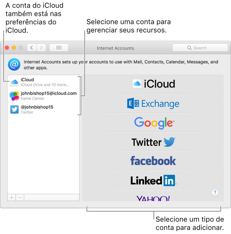 """Preferências """"Contas de Internet"""" com contas do iCloud e do Twitter listadas à direita e tipos de conta disponíveis listados à esquerda."""
