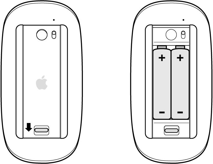 Imagens do compartimento de pilhas de um mouse aberto, mostrando as pilhas na orientação correta, e fechado.