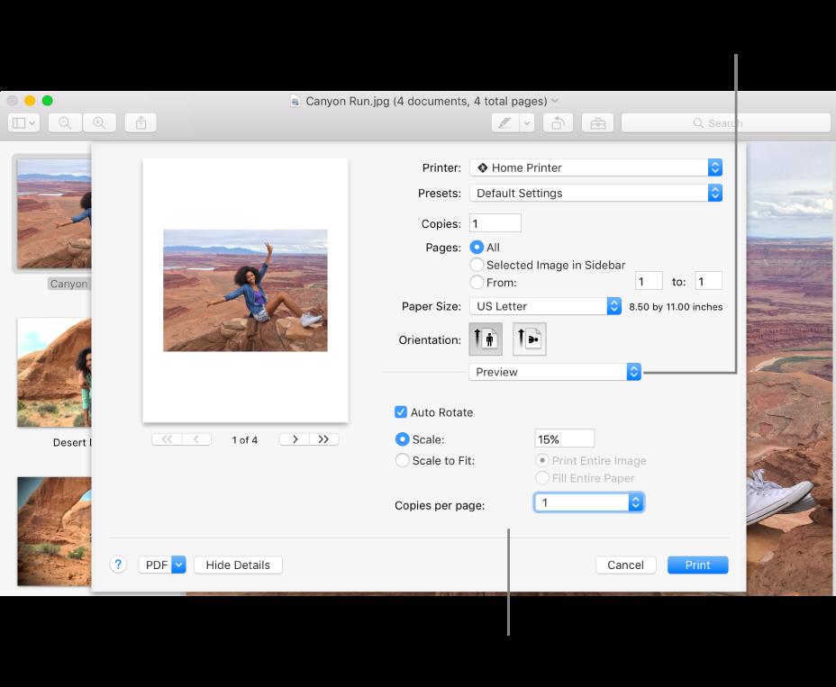 Selecione uma opção no menu pop-up de opções de impressão. As opções de impressão por baixo da barra separadora mudam conforme a opção que selecionar.