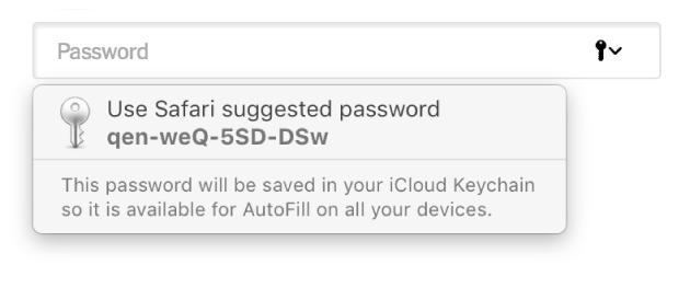 O parolă sugerată de Safari, care informează că va fi salvată în portcheiul iCloud al utilizatorului și disponibilă pentru auto-completare pe dispozitivele utilizatorului.