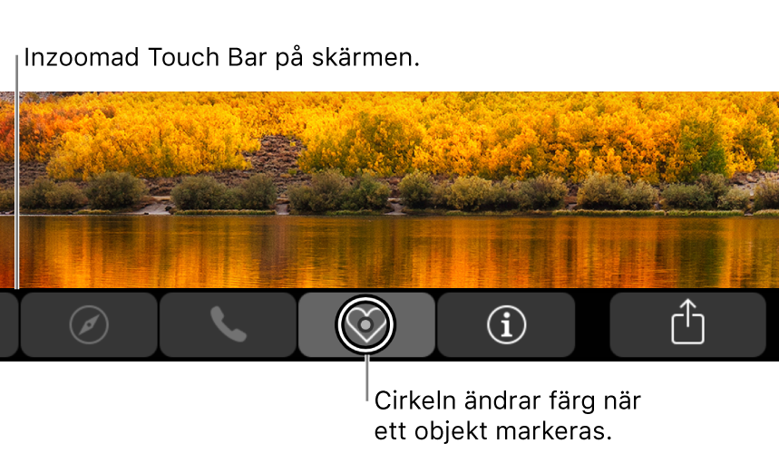 Inzoomad TouchBar visas längs med nederkanten av skärmen och cirkeln ovanför en knapp ändras när knappen markeras.