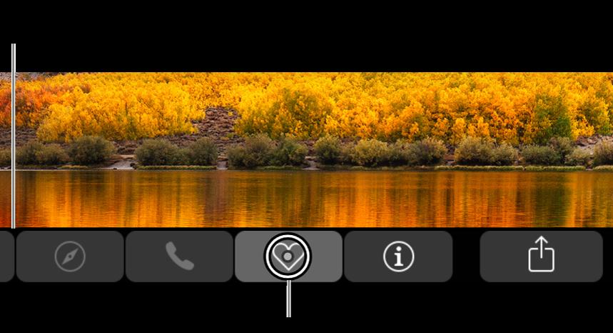 放大的 Multi-Touch Bar 横贯屏幕的底部;按钮被选定时,其上方的圆圈将发生更改。