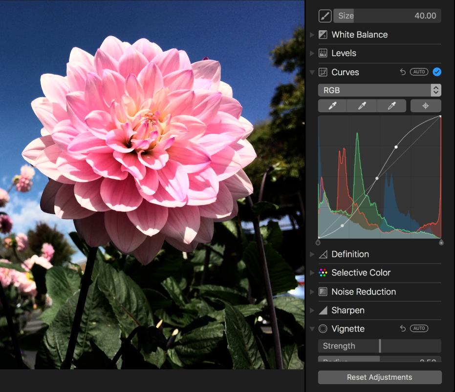 الصورة بعد تعديلات المنحنيات.