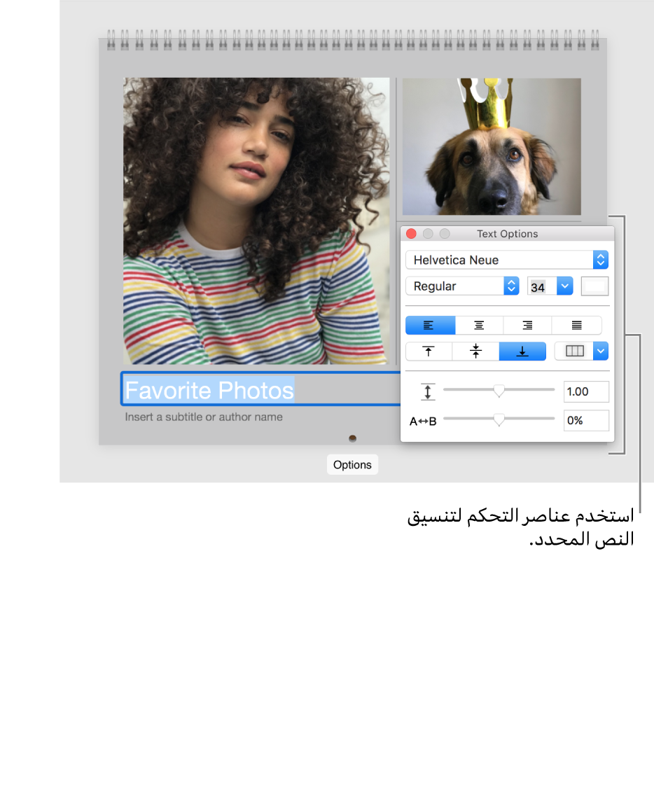 صورة مع نص محدد أسفلها ونافذة خيارات النص على اليسار.