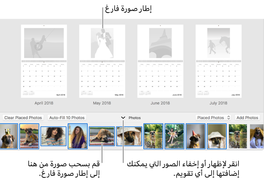 نافذة تطبيق الصور تعرض صفحات التقويم مع وجود منطقة الصور في الجزء السفلي.