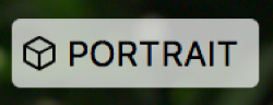 Odznak portrétu