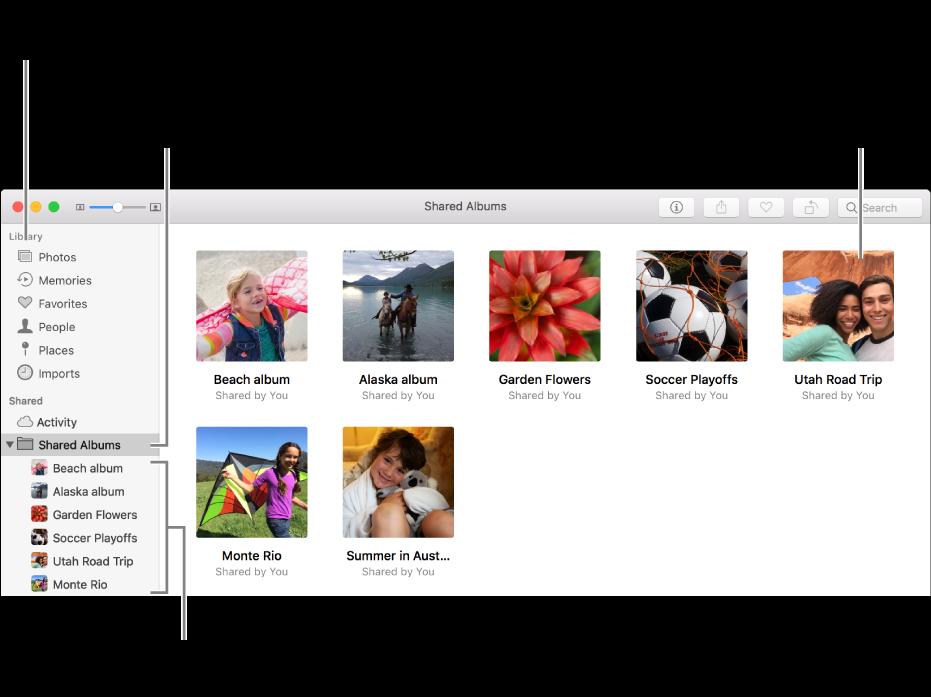 Panel Sdílené vaplikaci Fotky se zobrazenými sdílenými alby.