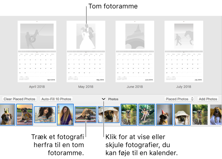 Fotos-vindue med sider i en kalender med Fotos-området nederst.