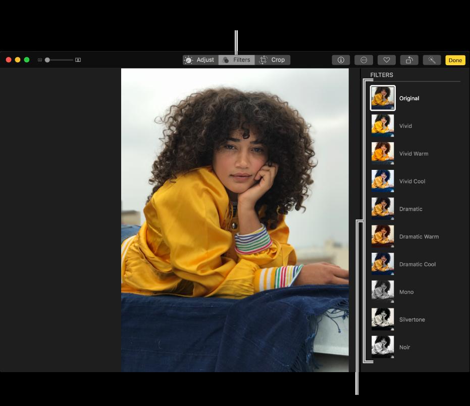 Fotografi i redigeringsoversigt med mulige filtre til højre.
