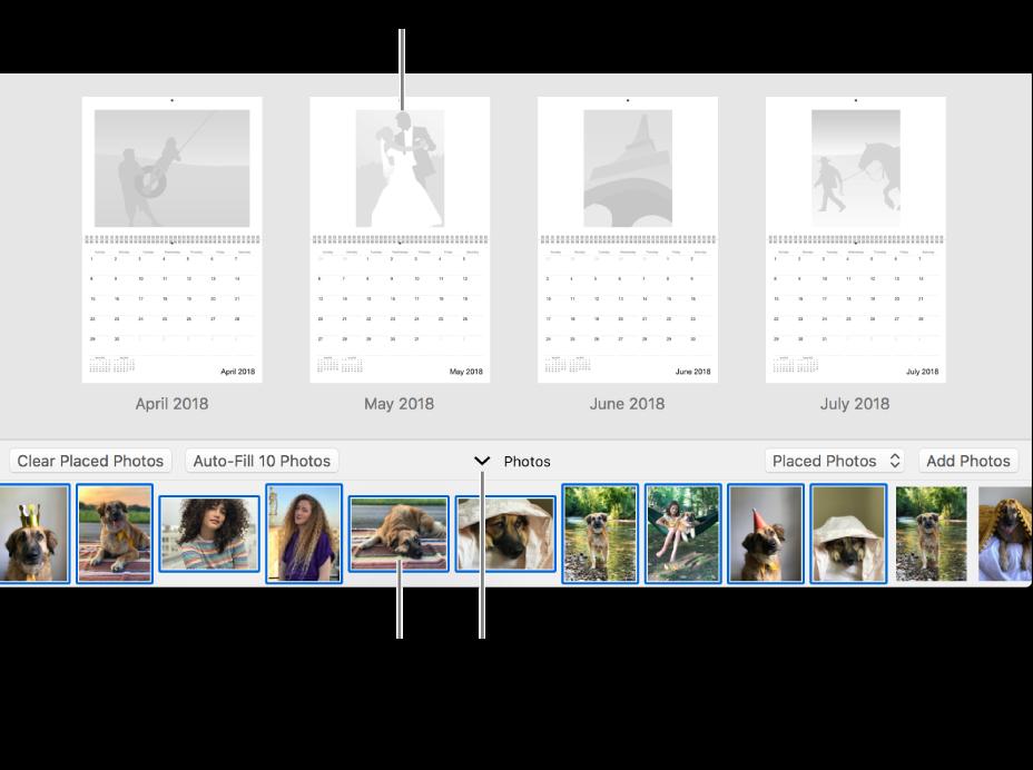 """Fenster """"Fotos"""" mit Seiten eines Kalenders und dem Bereich """"Fotos"""" unten"""
