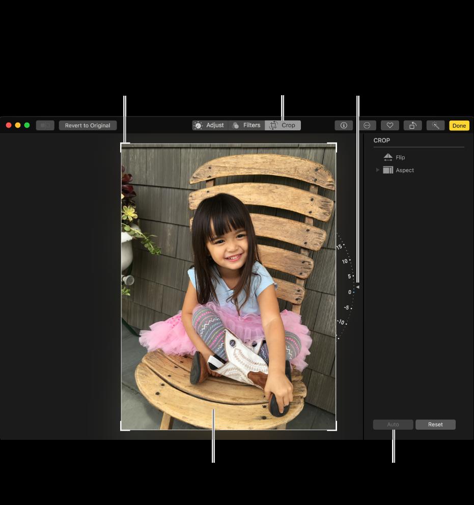 Fenster mit einem Foto und den Optionen zum Beschneiden und Begradigen.
