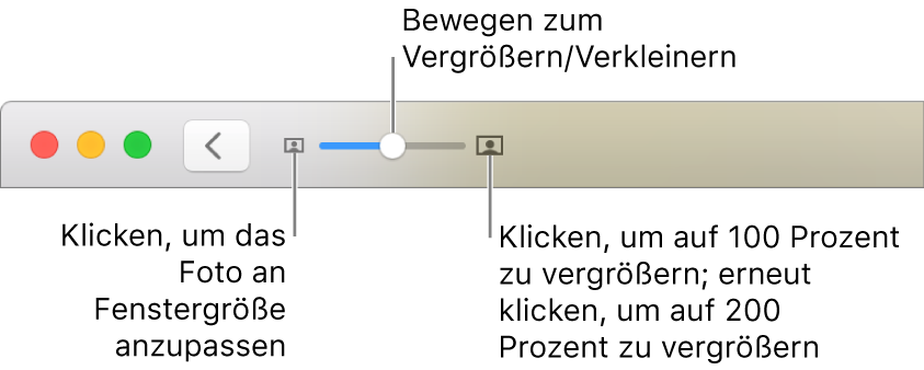 Symbolleiste mit den Zoomsteuerungen