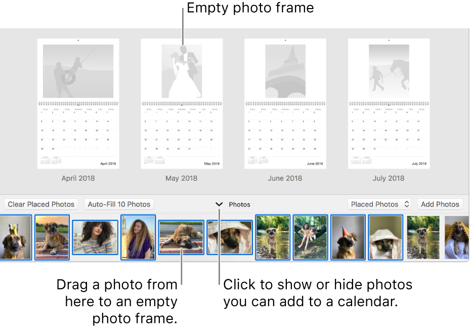 Photos window showing pages of a calendar with Photos area at the bottom.