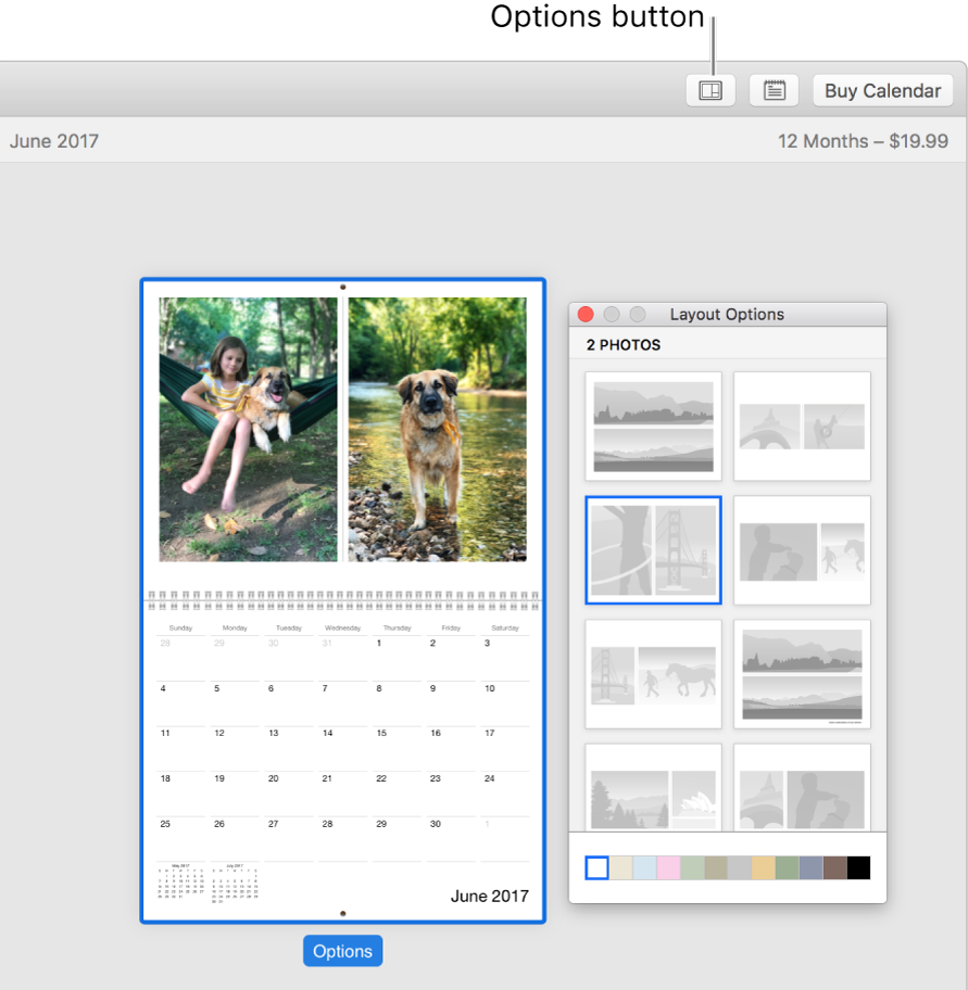 Calendar page at left with Layout Options window at right, showing page layouts.