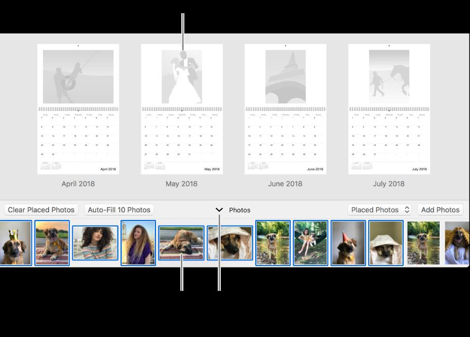 Ventana de Fotos mostrando páginas de un calendario con el área Fotos en la parte inferior.
