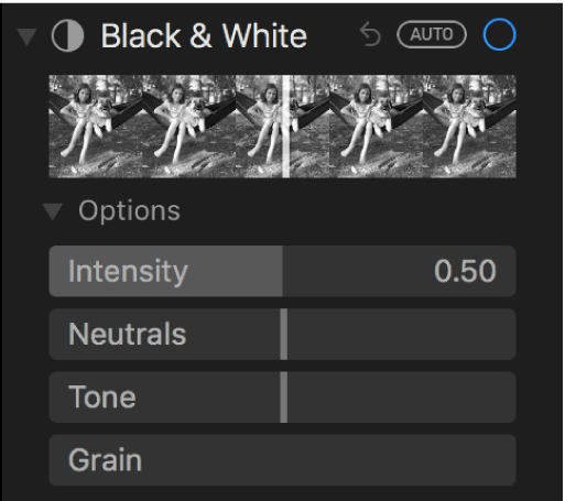 """El área """"Blanco y negro"""" del panel Ajustar mostrando los reguladores de Intensidad, Neutrales, Tono y Grano."""