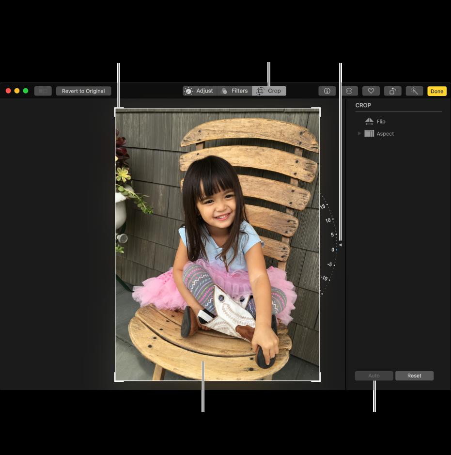Fenêtre présentant une photo avec les options de recadrage et de redressement.