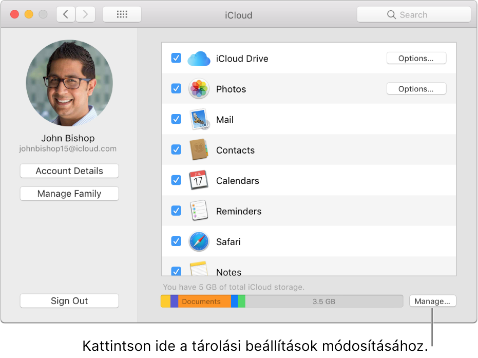 A Rendszerbeállítások ablak iCloud panelje.