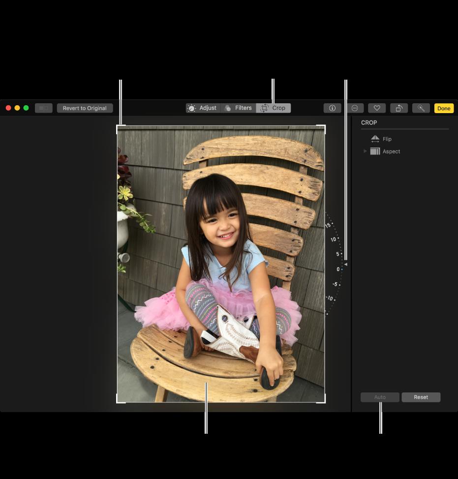 Fotót megjelenítő ablak a körbevágási és kiegyenesítési lehetőségekkel.