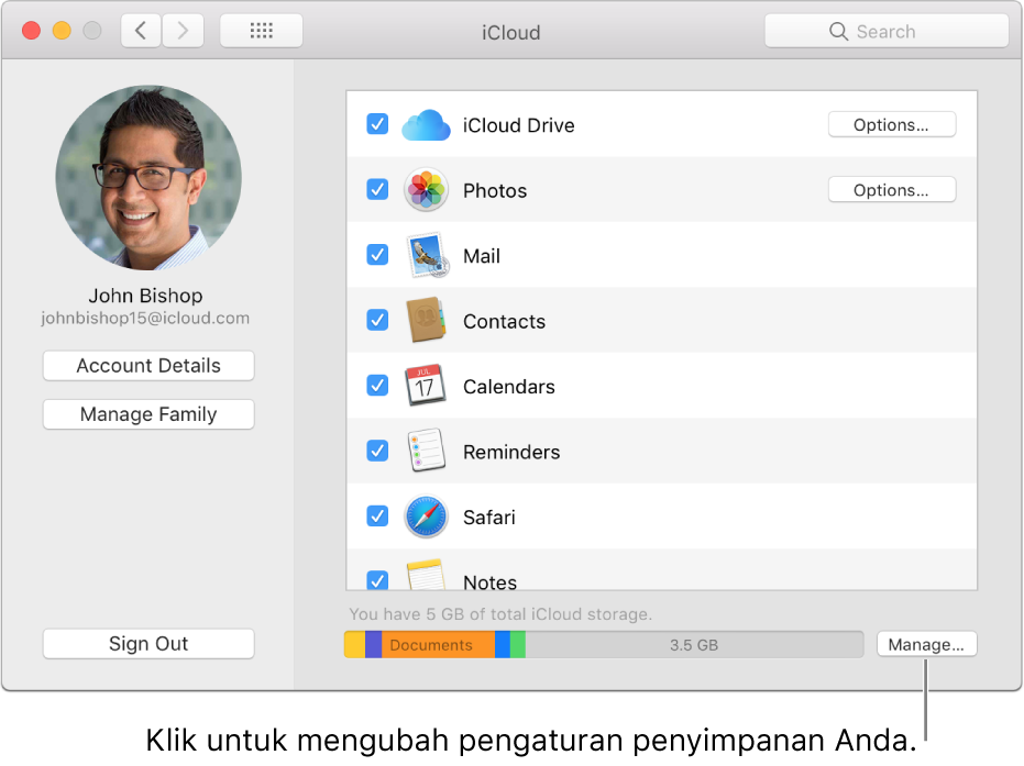 Panel iCloud pada Preferensi Sistem.