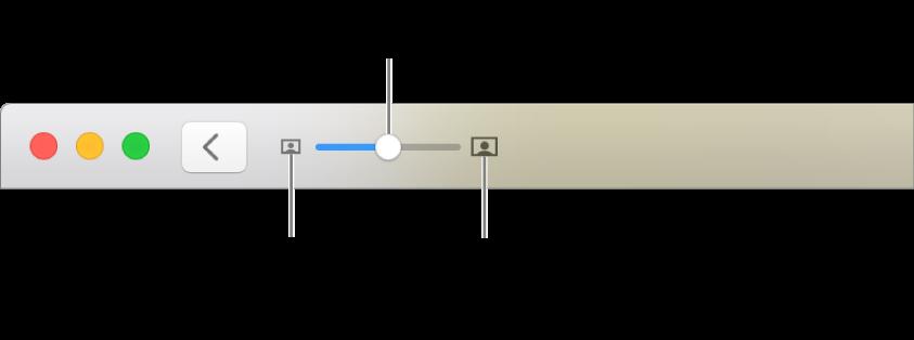 Bar alat menampilkan kontrol zoom.