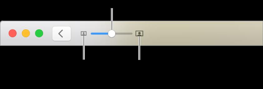 Barra degli strumenti con i controlli di zoom.