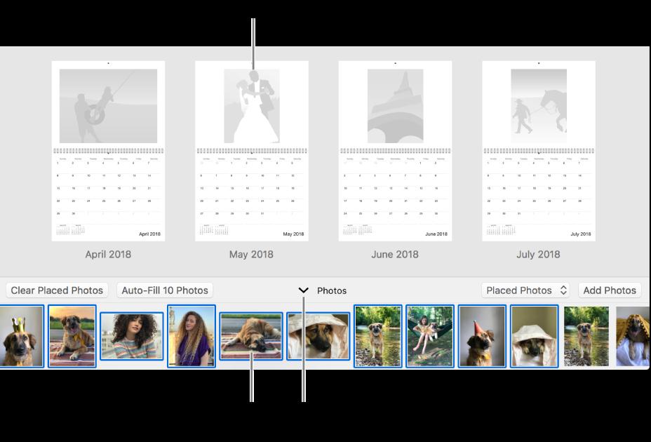 下部に「写真」領域があるカレンダーのページが表示されている「写真」ウインドウ。