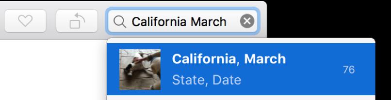 하나의 제안 검색 결과가 표시되어 있는 검색 기준이 설정된 검색 필드.