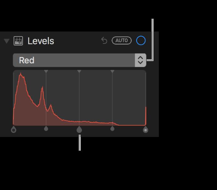 사진에서 빨간색을 변경하는 레벨 제어기 및 히스토그램.