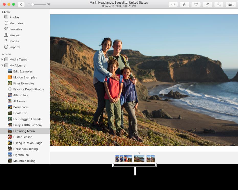 사진 아래에 동일한 앨범 또는 모음에 있는 사진을 보여주는 사진 앱 윈도우.