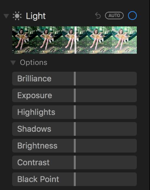 휘도, 노출, 하이라이트, 그림자, 밝기, 대비 및 블랙 포인트 슬라이더가 표시된 조절 패널의 빛 영역.
