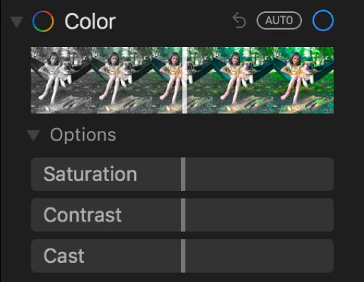 채도, 대비, 색조 슬라이더가 표시된 조절 패널의 색상 영역.