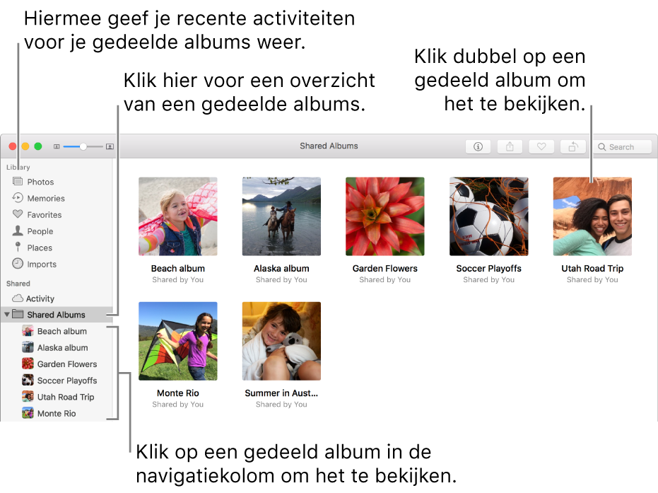 Het paneel 'Gedeeld' van het Foto's-venster, met gedeelde albums.