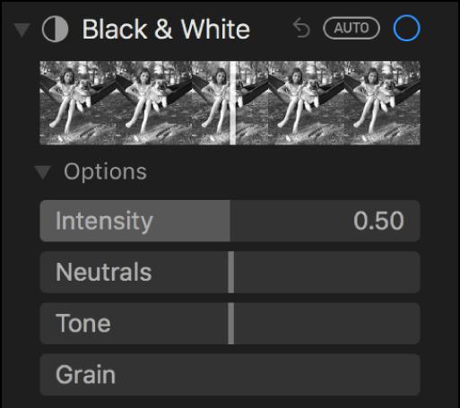 Het gedeelte 'Zwart-wit' van het paneel 'Pas aan' met schuifknoppen voor 'Intensiteit', 'Neutraal', 'Tint' en 'Korrel'.