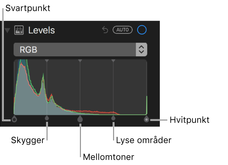 Nivåkontroller sammen med RGB-histogrammet, inkludert (fra venstre mot høyre) svartpunkt, skygger, mellomtoner, lyse områder og hvitpunkt.
