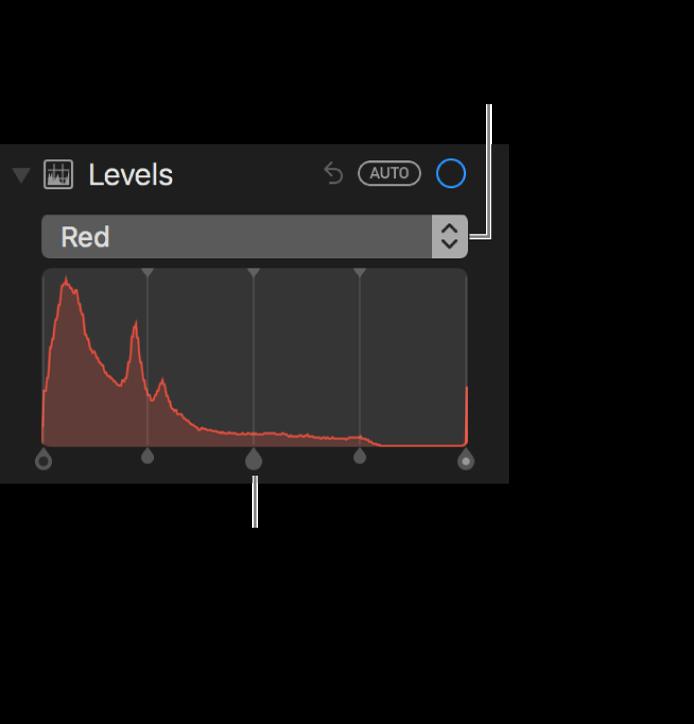 Controlos de níveis e histograma para alterar os tons vermelhos numa fotografia