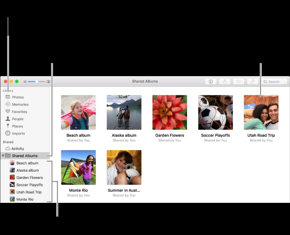 Панель «Общие» окна «Фото» с общими альбомами.