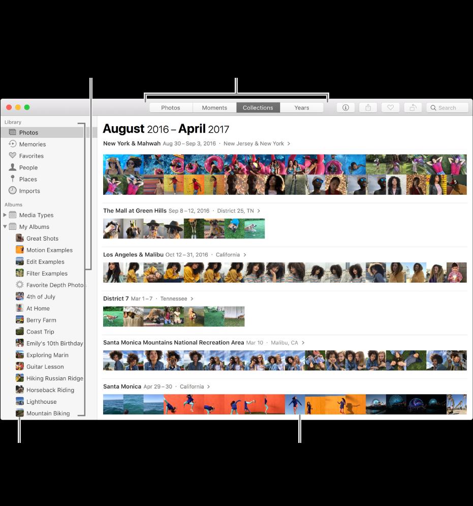 Окно программы «Фото» с фотографиями, организованными по коллекциям.