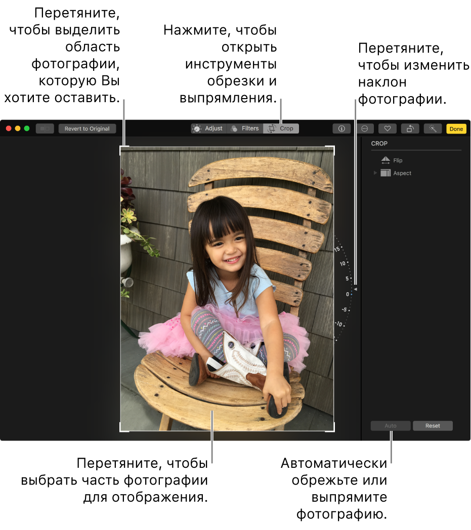 Окно, в котором показана фотография с вариантами обрезки и выпрямления.